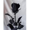 Černá růže 63